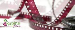Novi bioskop u Nišu: Kupina