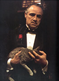 Kum Marlon Brando