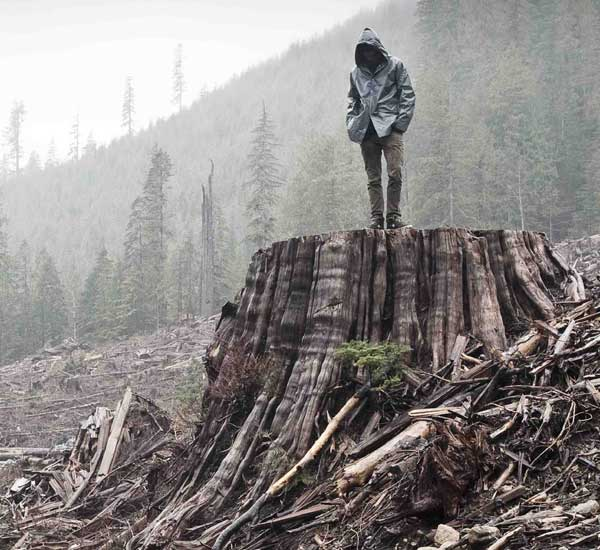dokumentarni film: AKO I JEDNO STABLO PADNE: priča o Frontu za oslobođenje Zemlje